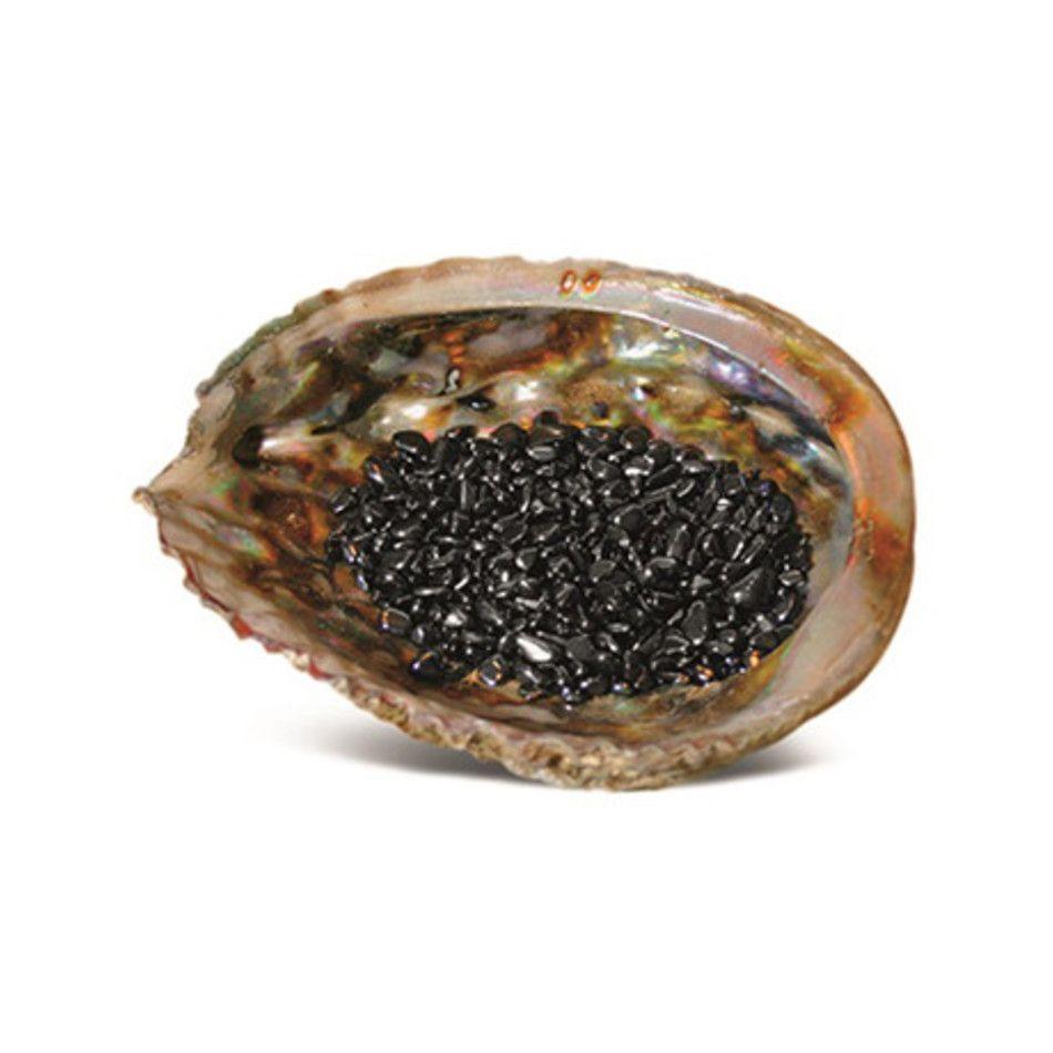 Abalone ontlaadschelp