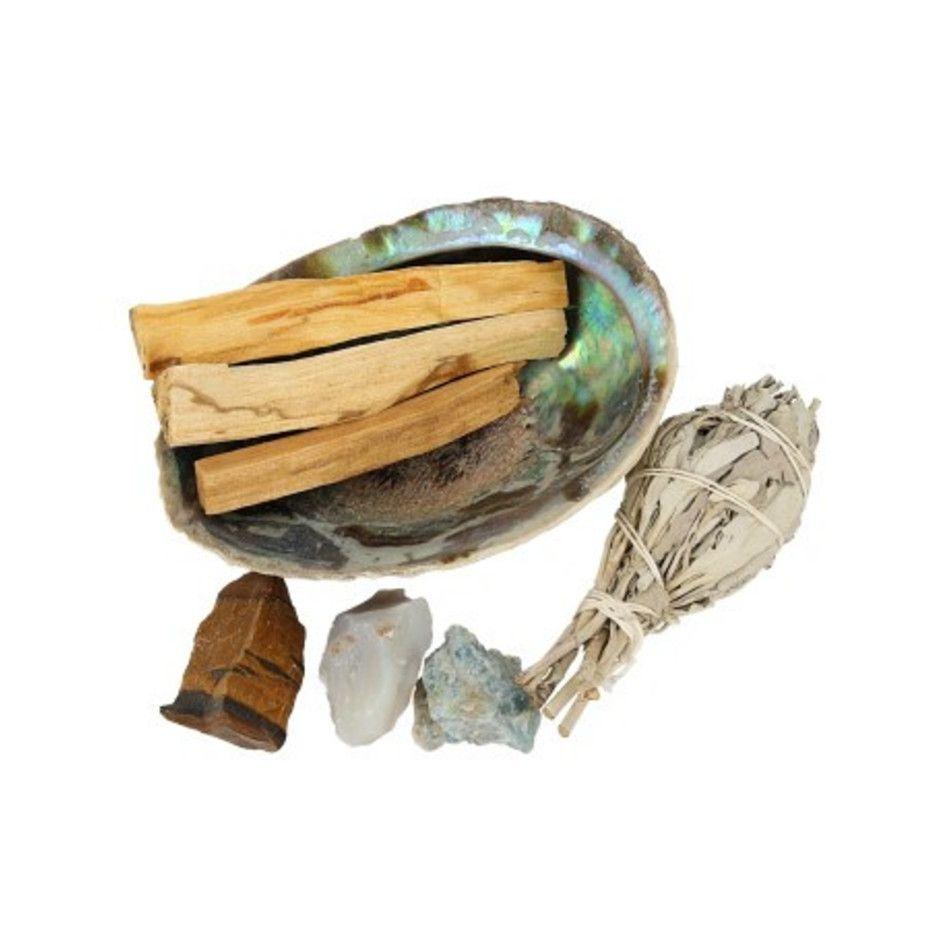 Abalone succes kit
