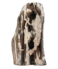 Fossiel hout uit Java gepolijst, p/kg