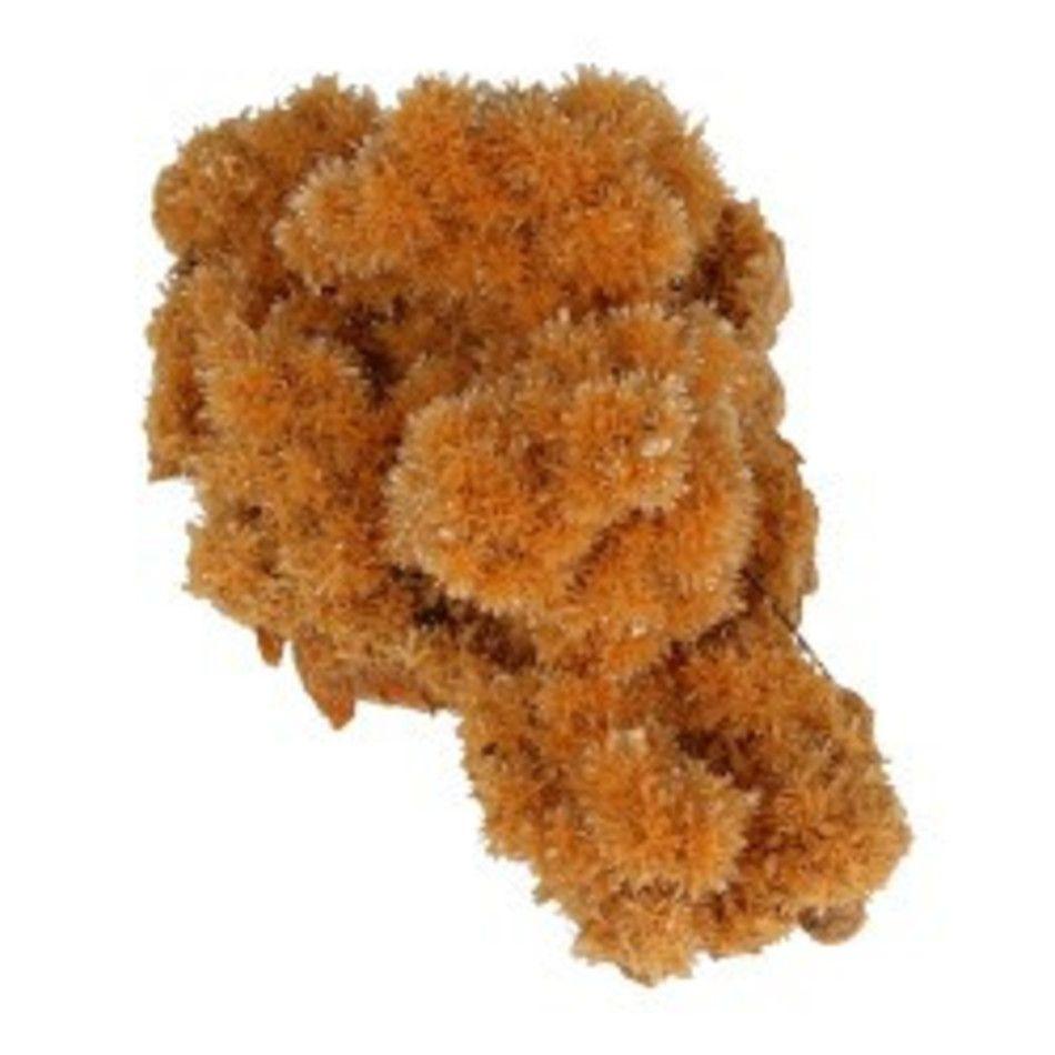 Seleniet oranje gekristalliseerd ruw, p/kg