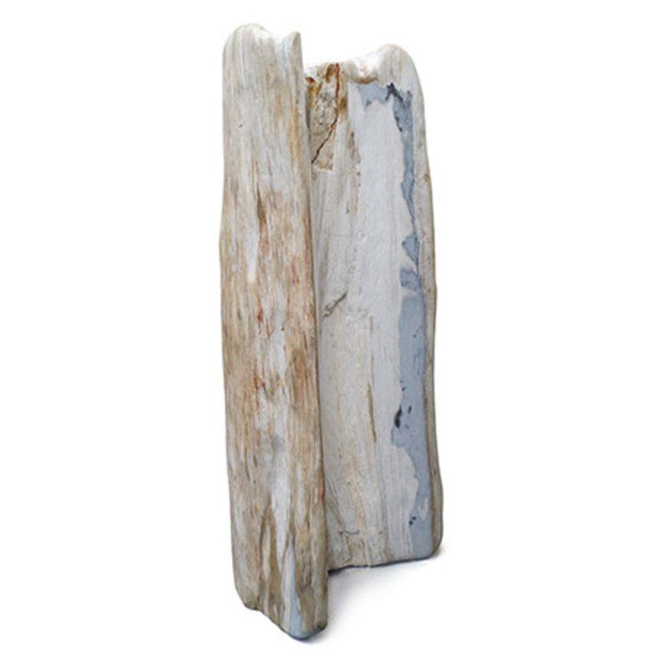 Versteend hout pilaar, Indonesië, nr. 15