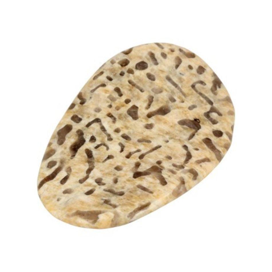 Zebradoriet edelsteen pringle