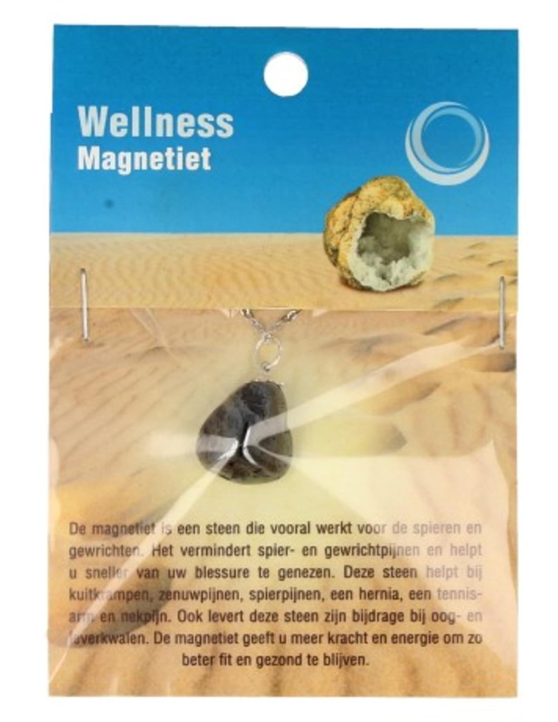 Magnetiet gezondheidshanger